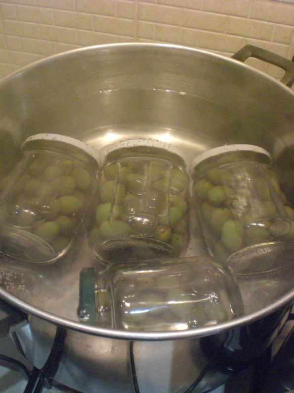 Olive verdi deamarizzate le ricette di mina for Conservazione bollette